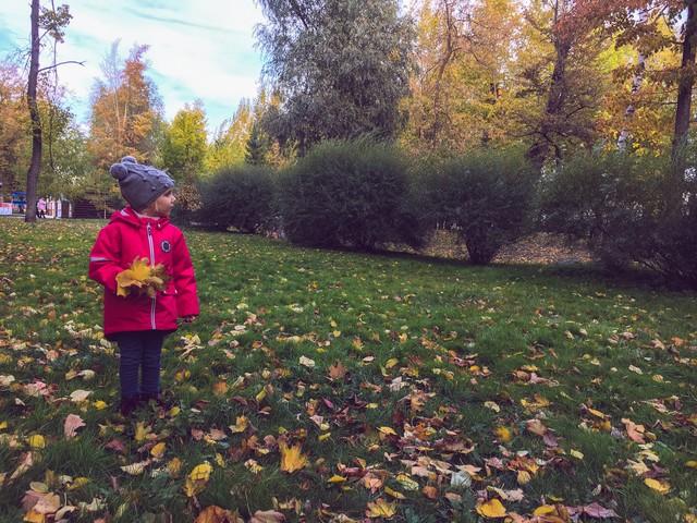 И всё-таки осень, мое любимое время года