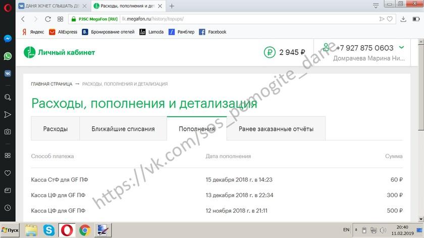 ДОМРАЧЕВ ДАНИИЛ Отчет о собранных средствах за 08.02.2019 - 11.02.2019