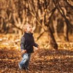 Осенние краски фото)