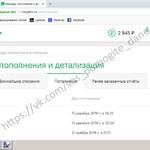 ДОМРАЧЕВ ДАНИИЛ Отчет о собранных средствах за 12.02.2019 - 14.02.2019