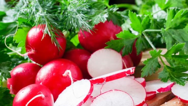 Салат из белокочанной капусты «Дачный» – Шаг 2