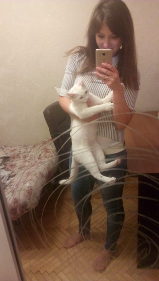 Отдаем кота,срочно!!!