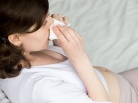 Опасен ли насморк во время беременности?