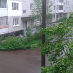 Спасения кота, это дело самого кота)))