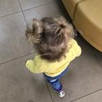 Причёска два одуванчика 😁