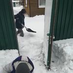 Открыли зимний шашлычнинг.
