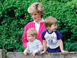 Принцы Уильям и Гарри: они помнят маму Диану