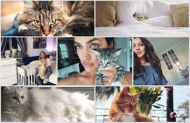 Мяу-мяу: знаменитости и их любимые кошки
