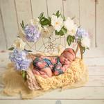 Фотосессия новорожденных. Акция!