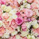 depositphotos_64906463-stock-photo-beautiful-flowers-background