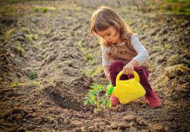Маленький садовник: как вырастить огород вместе с ребенком?
