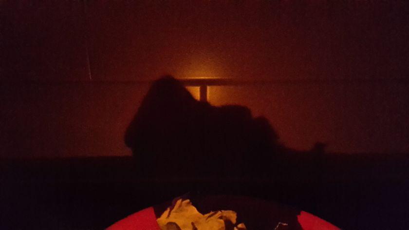 А вот и моя тень от бумаги :)